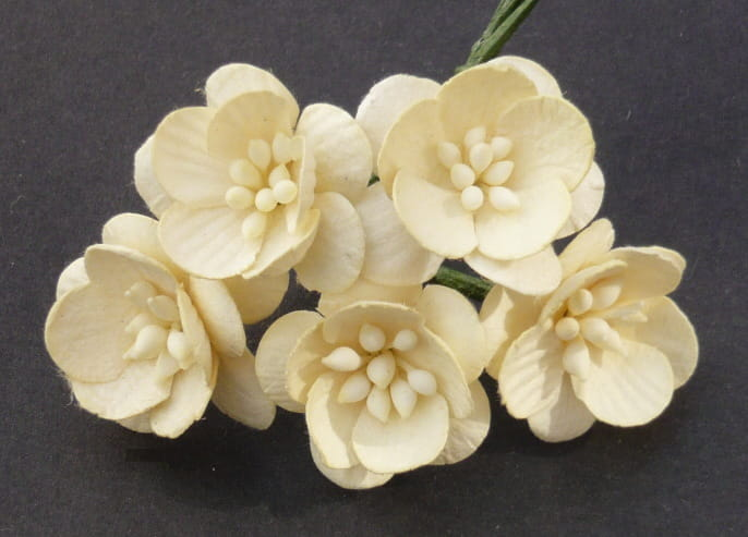 http://www.odadozet.sklep.pl/pl/p/Kwiatki-WOC-KWIAT-WISNI-cream-kremowe-059-25mm-5szt/5777