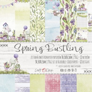 Papier scrap Craft O'Clock 30,5*30,5 Spring Bustling Zestaw