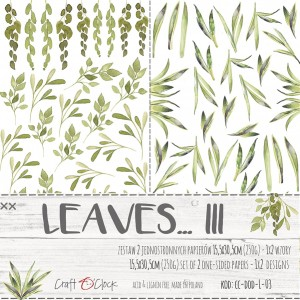 Craft O'Clock Dodatki - Leaves III