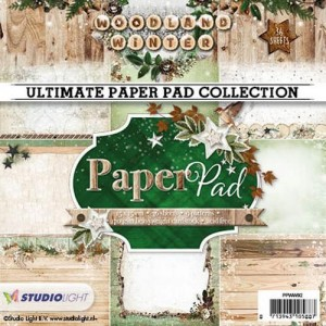 PAPIER SCRAP SL 15*15 170G A'36ARK PPWW92 Woodland Winter