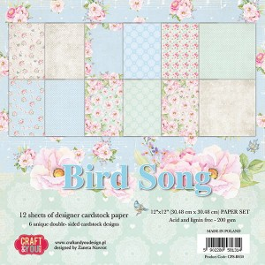 PAPIER SCRAP C&Y 30,5*30,5 A'12ARK BIRD SONG