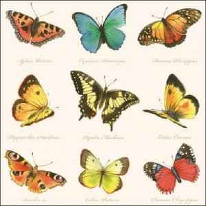 SERWETKA LUZ 33*33 AMBIENTE 13307160 COLLECTION OF BUTTERFLIES