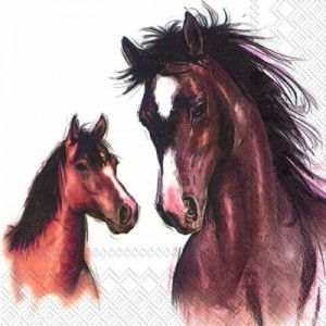 SERWETKA LUZ 33*33 IHR 599790 AMY AND LUCY