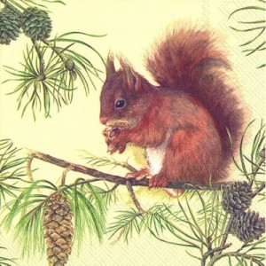 SERWETKA LUZ 33*33 IHR 582700 HUNGRY SQUIRREL
