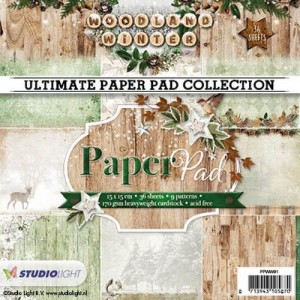 PAPIER SCRAP SL 15*15 170G A'36ARK PPWW91 Woodland Winter